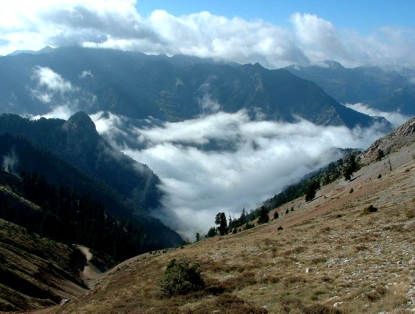 השמיים הם הגבול עוצמת הטבע